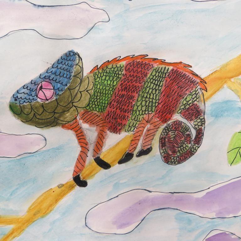 Y5 Chameleons