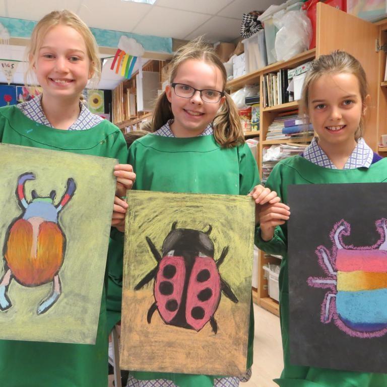 Y5 Chalk bugs